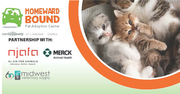 Free Spay & Neuter Clinic for Cats June 2021-ft